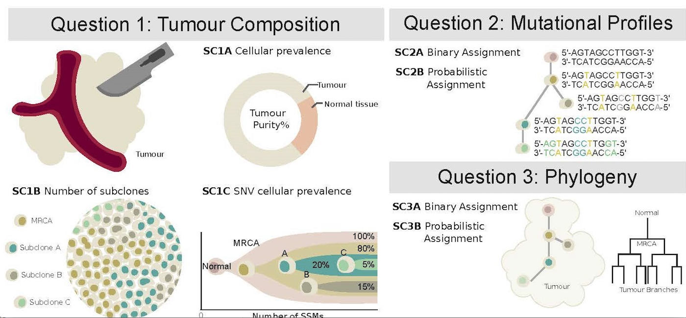 Figure from Creating Standards for Evaluating Tumour Subclonal Reconstruction article